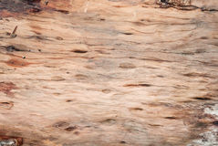 Wood  texture background old. Royalty Free Stock Images