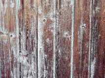 Wood texture or background Royalty Free Stock Images