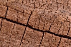 Wood surface texture Stock Photo