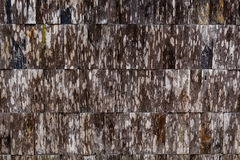 Wood texture background old panels Stock Photos