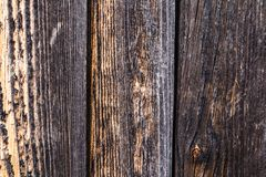 Wood texture. background old panels. Orange-brown boards Stock Image
