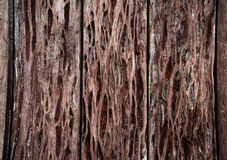 Wood texture. background old panels , wood wall. Wood texture. background old panels Stock Photography