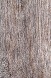Wood texture background old porous dry cracked empty aged timber rough surface closeup material colour natural vintage plank.  Royalty Free Stock Image