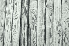 Wood texture background. old vertical panels Stock Photo