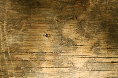 Wood texture Background, old wood background Royalty Free Stock Photo