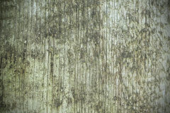 Wood  texture background pattern board. Wood texture background pattern with moss Stock Photo