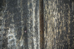 Wood  texture background pattern board. Wood texture background pattern with nails Stock Image