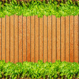 Wood texture background plank panel timber and green plant Calad Royalty Free Stock Image