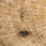 Wood texture. Wood background showing grain and texture Stock Photos