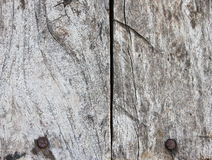 Wood texture. Background and traces of  texture thai Royalty Free Stock Photos