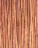 Wood texture background_tulip wood_06 Stock Image
