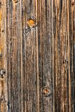 Wood Texture Background. Natural wood and lumber stock photography