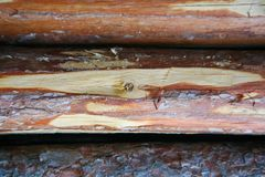 Wood Texture Background, Wooden Board Grains, Old Floor Striped Planks Stock Photography
