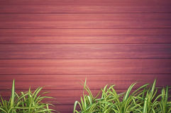 Wood Texture Backgrounds Royalty Free Stock Photo