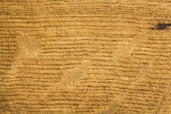 Wood texture for backgrounds Royalty Free Stock Photos