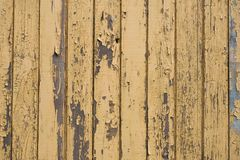 Wood background. Wood Texture Backgroung Yellow Design Royalty Free Stock Image