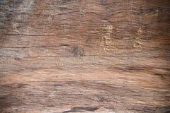 Wood texture bark tree trunk Stock Photography