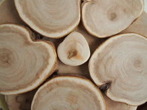 Wood texture. Beautiful wood texture for backgrounds Royalty Free Stock Image