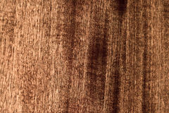 The wood texture Royalty Free Stock Photo