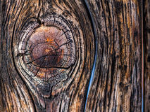 Wood texture. Close up of wood texture Royalty Free Stock Photo