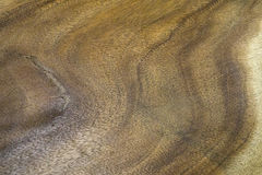 Wood texture. Close up wood texture background Stock Photography