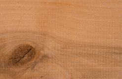 Wood texture. Close up for your background Royalty Free Stock Photos