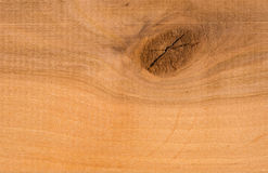 Wood texture. Close up for your background Royalty Free Stock Photo