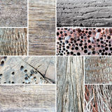 Wood texture collage. Royalty Free Stock Photography