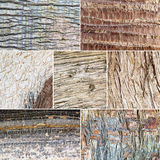 Wood texture collage. Stock Images