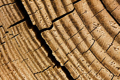 Wood texture with a crack Stock Photos