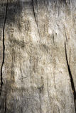 Wood texture. And cracks background Stock Image