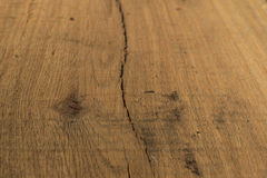 Wood texture of cut tree. Tree background. Wood texture of cut tree. Tree background Royalty Free Stock Photos