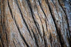 Wood texture. Dark Wood texture. Abstract background Royalty Free Stock Photos