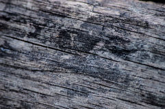 Wood texture. Dirty wood texture whit scratches Stock Images
