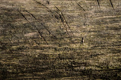 Wood texture. Dirty wood texture whit scratches Royalty Free Stock Image