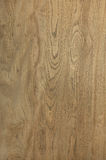 Wood Texture Elm Abstract Natural Grain Pattern for Background I Royalty Free Stock Images