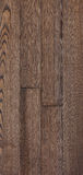 Wood texture of floor, ash parquet. Stock Images