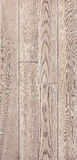 Wood texture of floor, ash parquet. Stock Photography