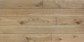 Wood texture background for design, oak toned grey board . Stock Image