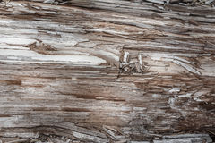 Wood texture. Gray timber board with weathered crack lines. Natural background for shabby chic design. Grey wooden floor Stock Photos