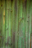Wood texture green abstract old stock photography