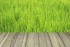Wood texture and green field Royalty Free Stock Photos