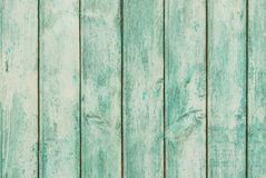 Wood texture of green weathered boards plands Stock Photos