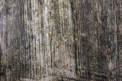 Wood texture. Grunge old wood texture with scratches Royalty Free Stock Photography