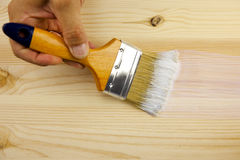 Wood texture, hand and paintbrush Stock Image