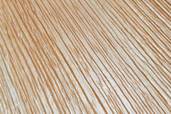 Wood texture. Image of wood texture for backgrounds Stock Images