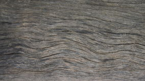 Wood texture. Interesting wood texture for backgrounds Royalty Free Stock Images