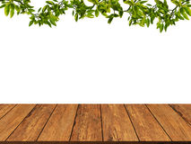 Wood texture with leaves and branch background.wood wall.grunge Stock Photo