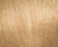 Wood Texture Light Veneer Abstract Natural Grain Pattern for Bac Royalty Free Stock Photos