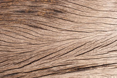 Wood texture line Stock Images